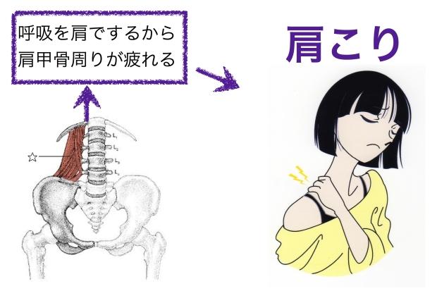 バレエで肩が上がる原因の1つは腰