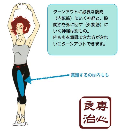 内ももにいく神経とターンアウトで使う筋肉の神経は一緒