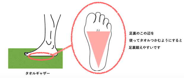 バレエ 足裏 鍛える 方法