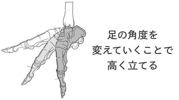 足裏の筋肉を使ってつま先を伸ばすために.017