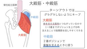 中臀筋は骨盤を支えるときに使う