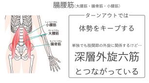 股関節を開く(外旋する)筋肉.006