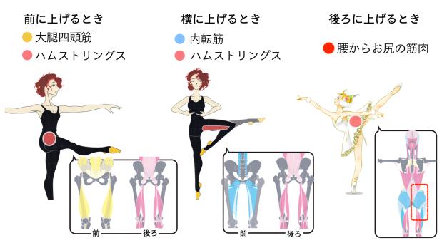 バレエ 股関節がつまるパターン